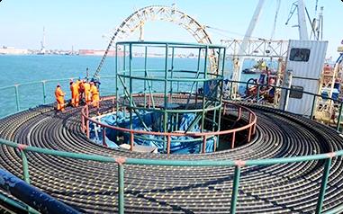 国内海底电缆企业水平如何?看完这篇我懂了!